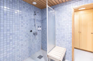 Superior Sauna, bathroom