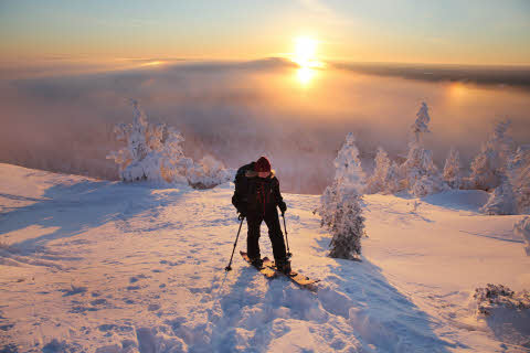 Backcountry skiing during sunset, Ruka Ski Resort