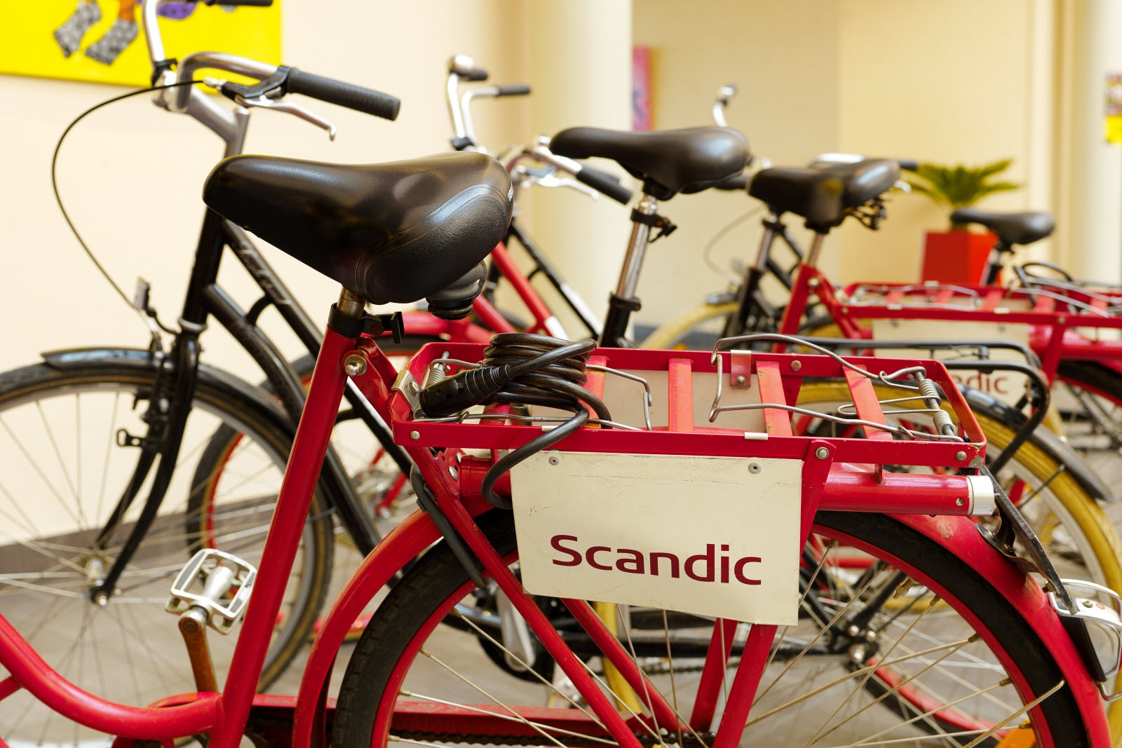 Scandic Star, Bicycle